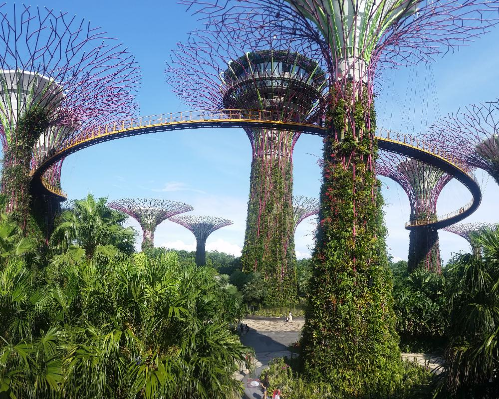 Singapore - Flower Towers